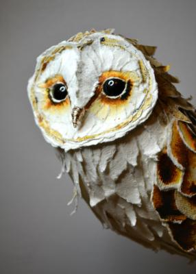 thumb_barn-owl-suzanne-breakwell