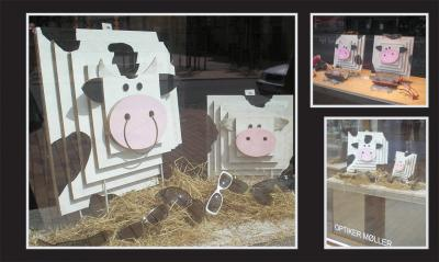 thumb_c_Cows_having_fun_in_spectacles_shops